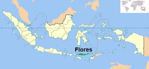 Locatie Flores - Indonesië